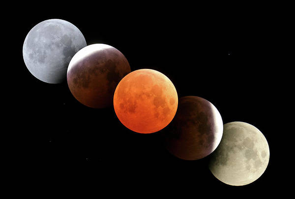 Wall Art - Photograph - Total Lunar Eclipse by Alan Dyer/visuals Unlimited, Inc. /science Photo Library