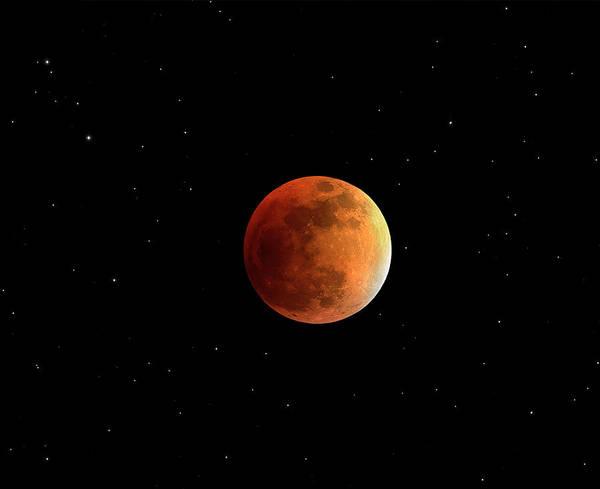 Lunar Photograph - Total Lunar Eclipse by Damian Peach