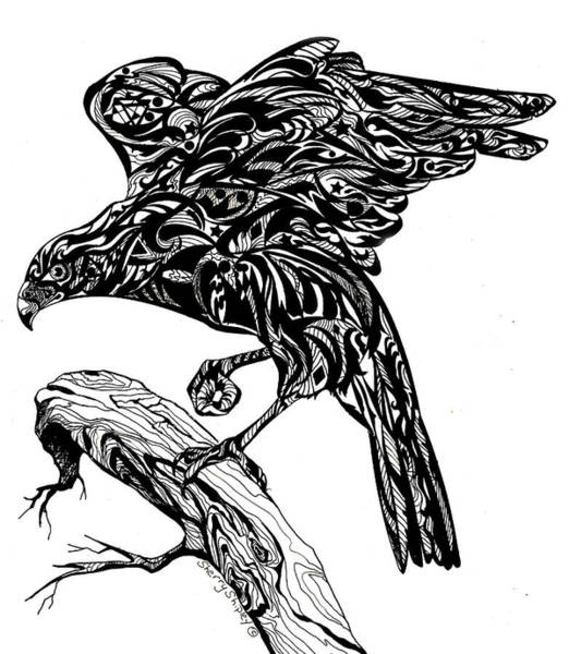 Drawing - Totem Tangle Hawk by Sherry Shipley