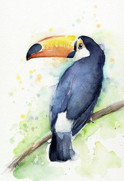 Bird Wall Art - Painting - Toucan Watercolor by Olga Shvartsur