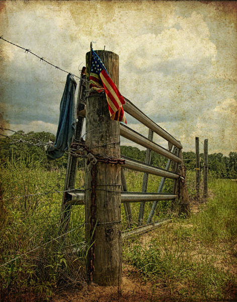 Touch Of Americana Art Print