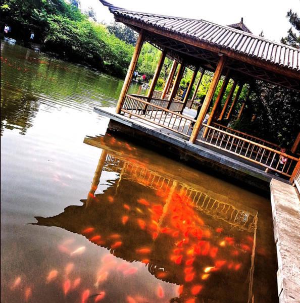 Photograph - Touch Of Zen by HweeYen Ong