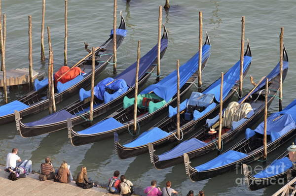 Wall Art - Photograph - Tourists And Row Of Empty Moored Gondolas by Sami Sarkis