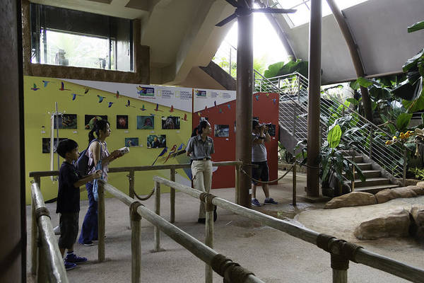 Jurong Bird Park Photograph - Tourists In A Queue At One Of The Exhibits Inside The Jurong Bird Park by Ashish Agarwal