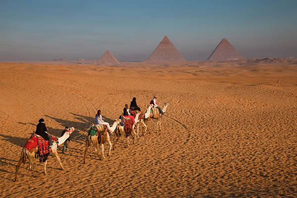 Wall Art - Photograph - Tourists On Camels & Pyramids Of Giza by Richard I'anson