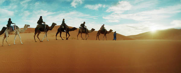 Berber Wall Art - Photograph - Tourists Riding Camels by Animal Images
