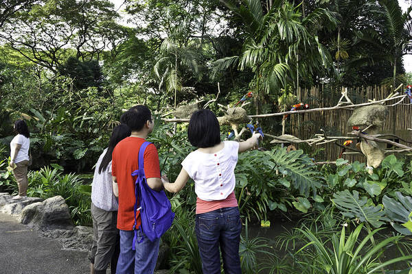 Jurong Bird Park Photograph - Tourists Viewing The Colorful Birds by Ashish Agarwal