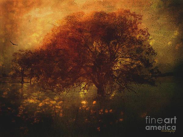 Digital Art - Toward A Secret Sky ... by Chris Armytage