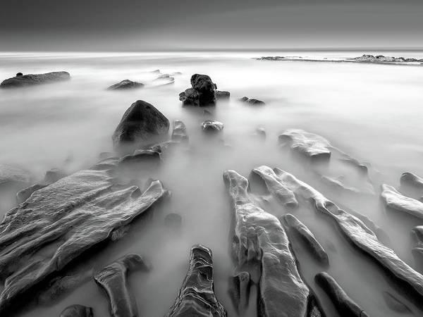 Coast Photograph - Toward The Sea by Yi Fan