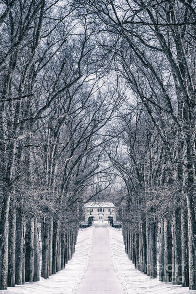Country House Photograph - Towards The Lonely Path Of Winter by Evelina Kremsdorf