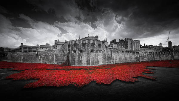 Wall Art - Photograph - Tower Of London Remembers by Ian Hufton