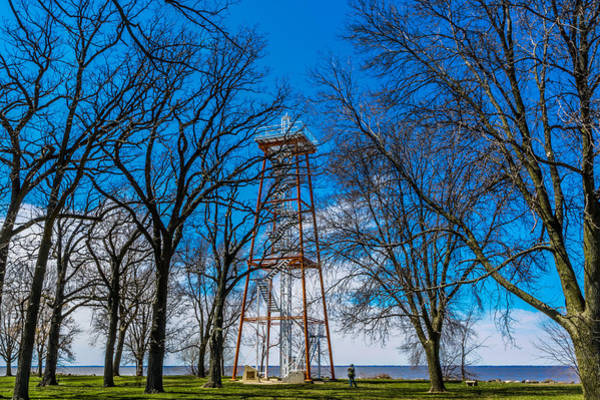 Photograph - Towering Above The Trees by Randy Scherkenbach