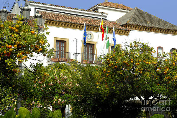 Photograph - Town Hall In Marbella by Brenda Kean