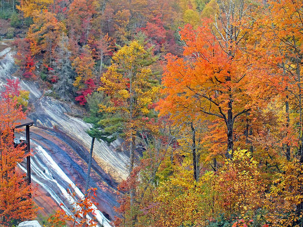 Photograph - Toxaway Falls In The Fall by Duane McCullough