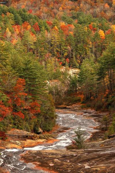 Photograph - Toxaway River In Autumn by Carol Montoya