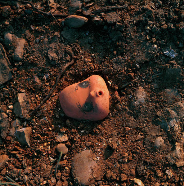 Litter Photograph - Toy Head Littering The Soil by Dr Jeremy Burgess/science Photo Library.
