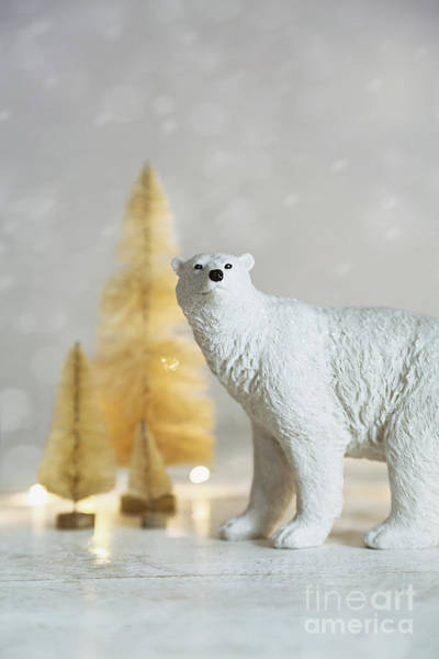 Photograph - Toy Polar Bear With Little Gold Trees And Lights by Sandra Cunningham