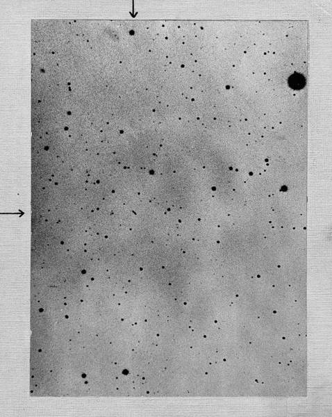 Star Track Wall Art - Photograph - Track Of The Asteroid Sappho by Universal History Archive/uig