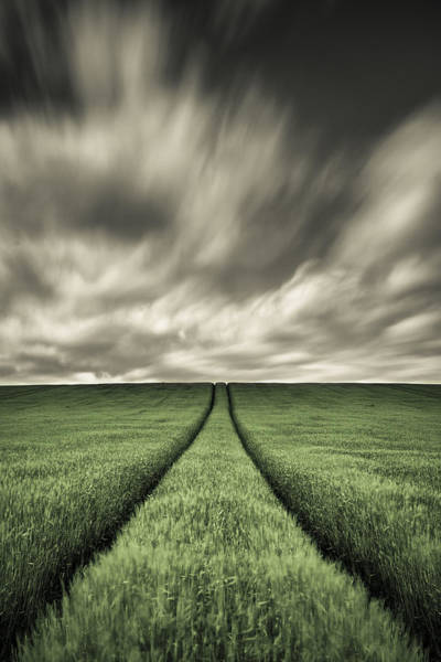 Parallels Wall Art - Photograph - Tracks by Dave Bowman