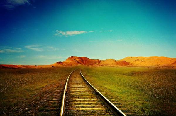 Wall Art - Photograph - Tracks Into Wilderness by Movie Poster Prints