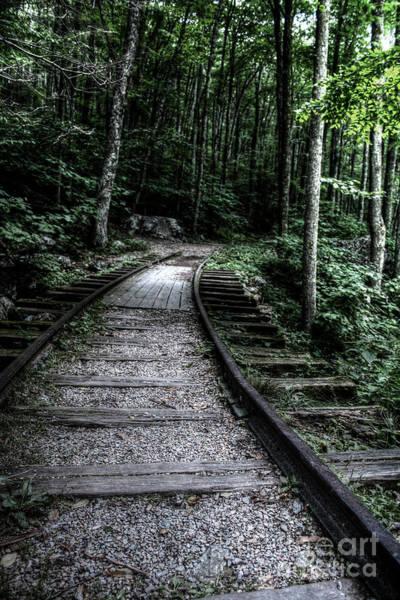 Photograph - Abandoned Tracks by Doc Braham