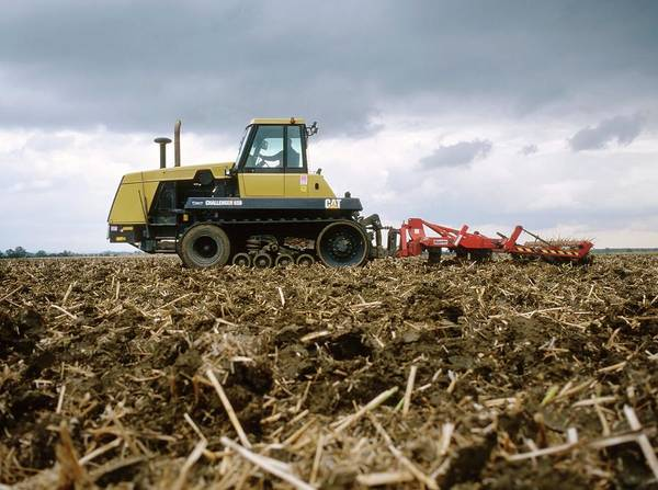 Wall Art - Photograph - Tractor Ploughing A Rape Field by Robert Brook/science Photo Library