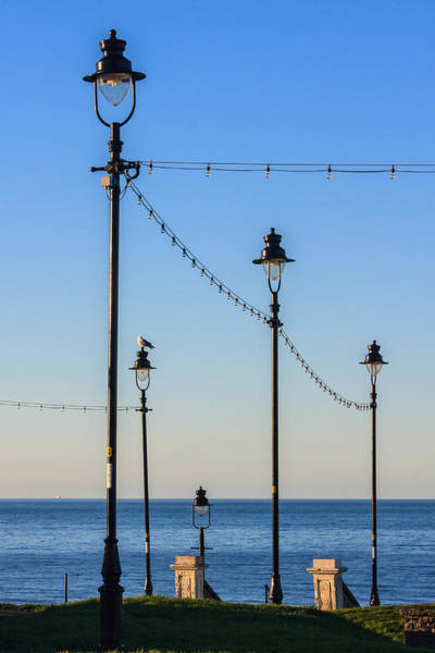 Photograph - Traditional Street Lights by Susan Leonard