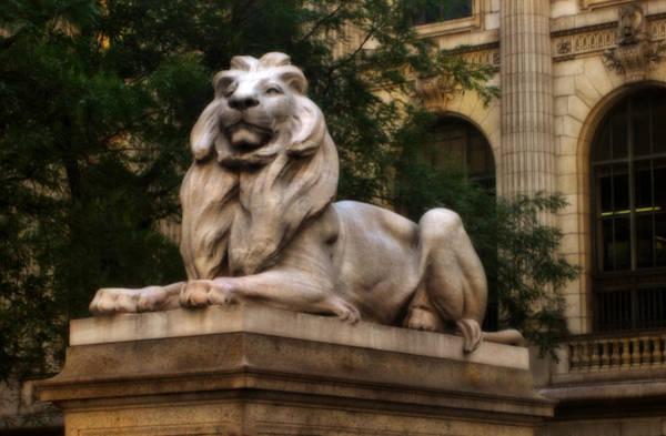 Photograph - Original Mgm Lion  by Doc Braham