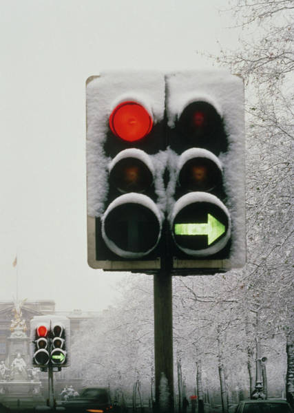 Stop Light Photograph - Traffic Lights by Phil Jude/science Photo Library