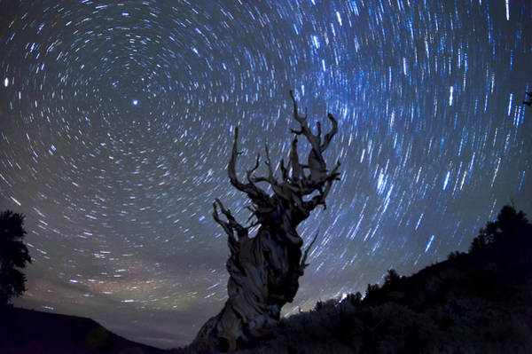 Star Trails Photograph - Trail Of The Ancients by Cat Connor
