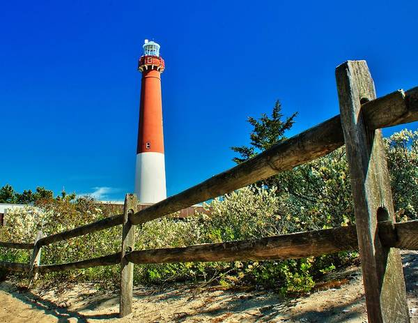 Photograph - Trail To Barnegat Light by Nick Zelinsky