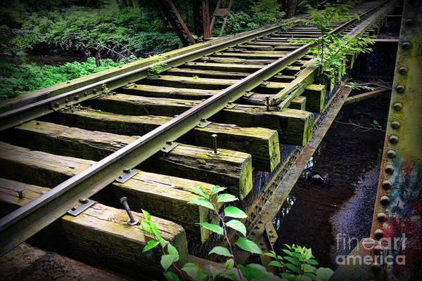 Railroad Tie Wall Art - Photograph - Train - Railroad Trestle by Paul Ward