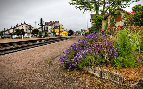 Wall Art - Photograph - Train Stop by Keith Hutchings