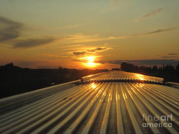 Photograph - Train Sunset by Sharron Cuthbertson
