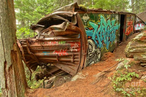 Photograph - Train Tree Stop by Adam Jewell