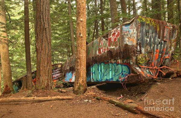 Train Derailment Photograph - Train Wreck Canvas Among The Trees by Adam Jewell
