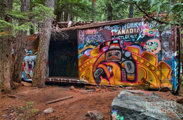 Photograph - Train Wreckage In The Forest by Adam Jewell