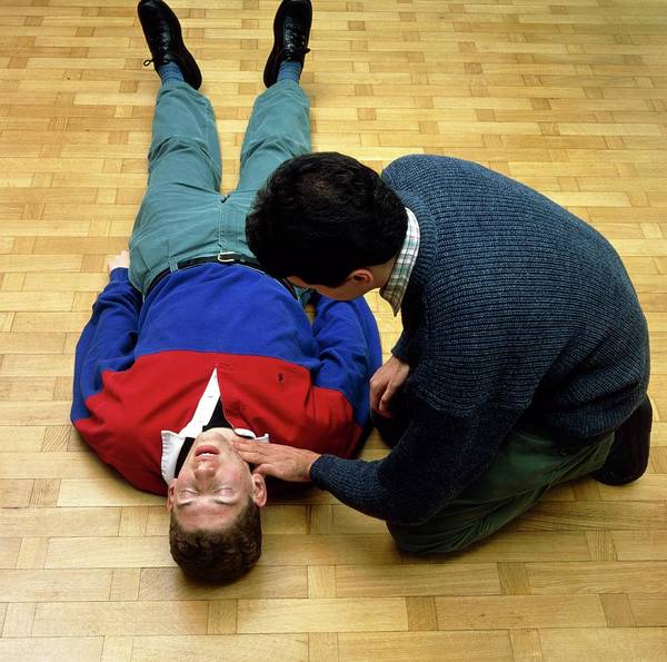 Pulse Photograph - Trainee First Aider Checks Pulse Of Volunteer by Alex Bartel/science Photo Library