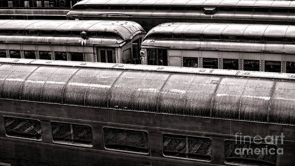 Photograph - Trains by Olivier Le Queinec