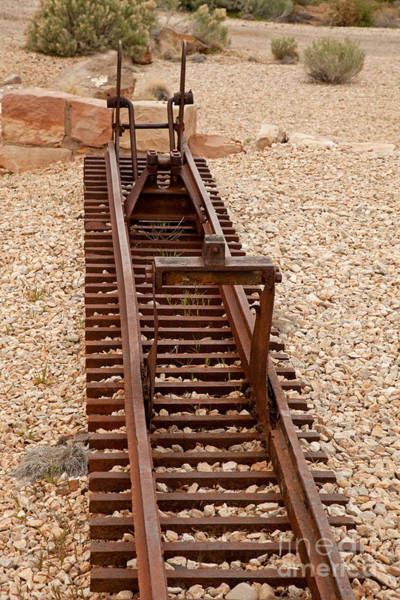 Photograph - Tram Tracks by Fred Stearns