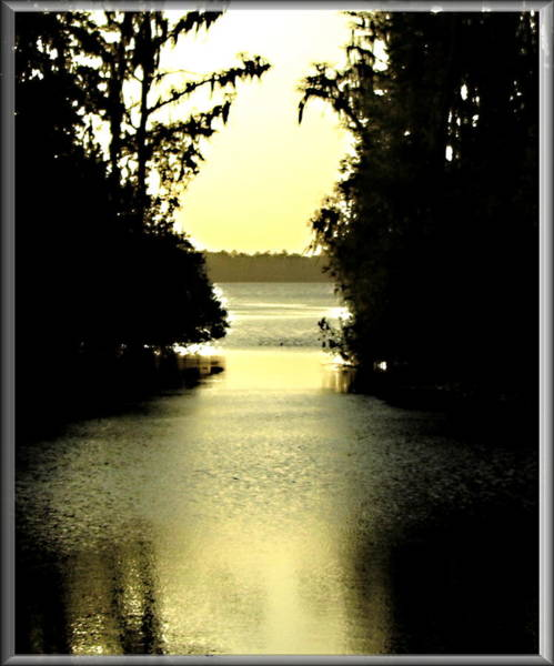 Photograph - Tranquil Jacksonville Florida Sunset by Danielle  Parent