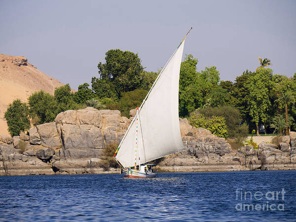 Photograph - Tranquil Nile by Brenda Kean