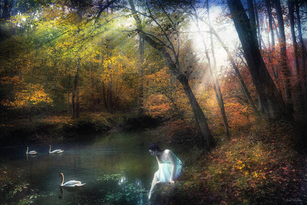 Tranquil Place Art Print