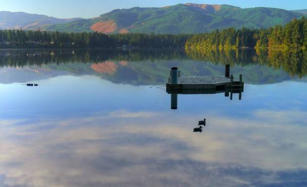 Wall Art - Photograph - Tranquil Reflection by Peter Mooyman
