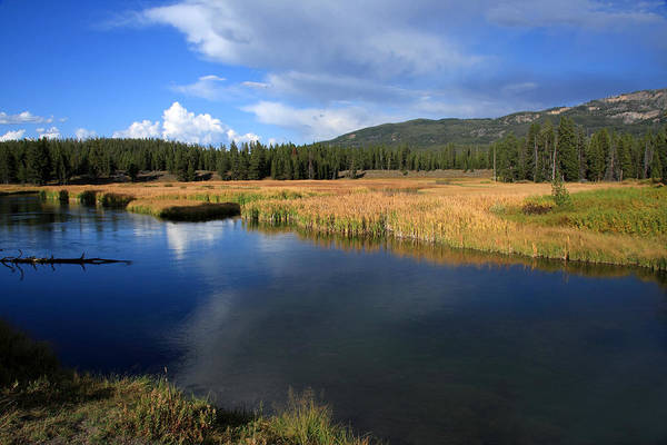 Photograph - Tranquil Yellowstone   by Aidan Moran
