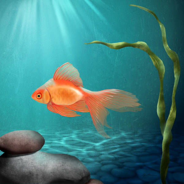 Fish Digital Art - Tranquility by April Moen