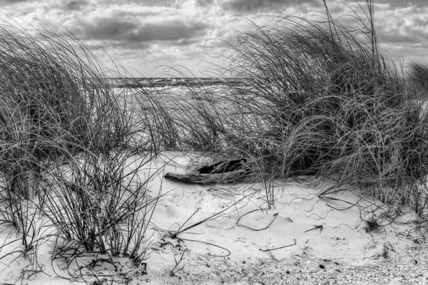 Wall Art - Photograph - Tranquility by Gary Yost