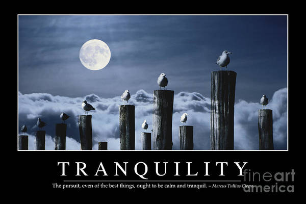 Photograph - Tranquility Inspirational Quote by Stocktrek Images