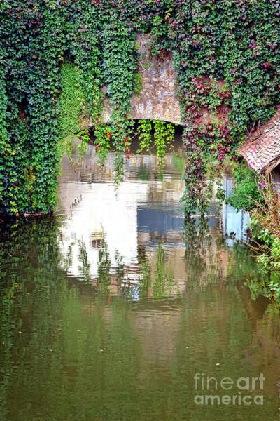Wall Art - Photograph - Tranquility by Olivier Le Queinec