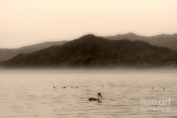 Photograph - Tranquility On The Salton Sea By Diana Sainz by Diana Raquel Sainz